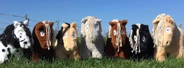 Crafty Ponies aanbieding starter set 'nr 1'-0