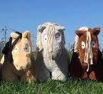 Crafty Ponies aanbieding starter set 'Deluxe'-0